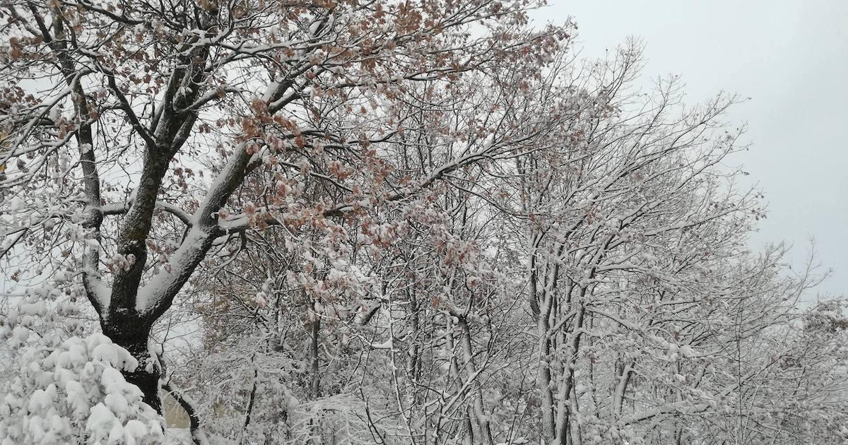Campania, prevista nuova ondata di gelo