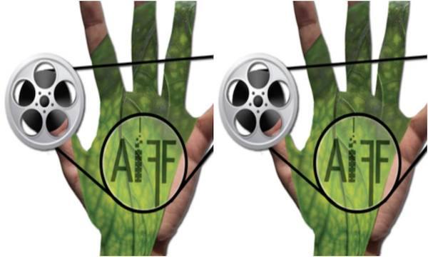 Ariano International Film Festival, novanta opere in gara fino al 5 agosto
