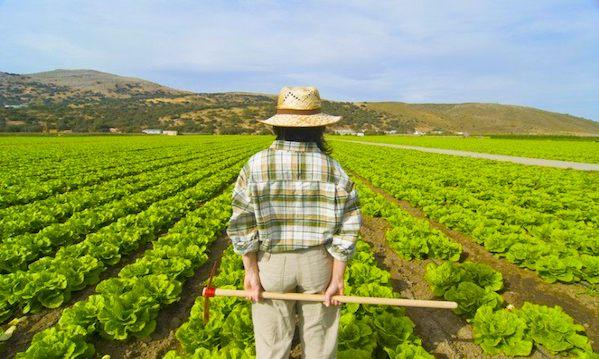 ColtiviAmo il gusto, mercatini e degustazioni nel giardino degli odori