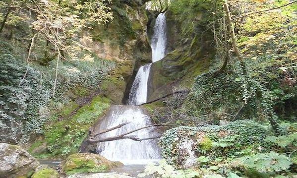 Biodiversità e turismo, a Calabritto focus con esperti
