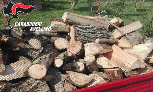 Monteverde, furto di legna: due denunce