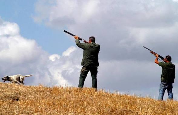 Bonito: caccia nei pressi delle abitazioni, intervengono le guardie ambientali
