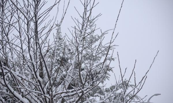 Neve nella notte in Alta Irpinia: scuole chiuse