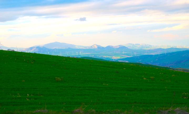 Distretto rurale per le aree Interne, Cozzolino e Petracca a Bisaccia