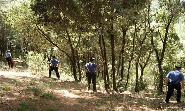 Escursioni e ricerca funghi nei monti d'Irpinia, i consigli dei Carabinieri