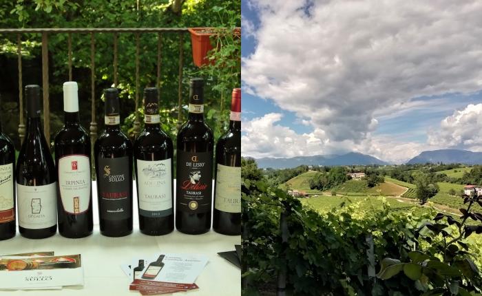 Biowine, Irpinia e Veneto si incontrano a Castelfranci