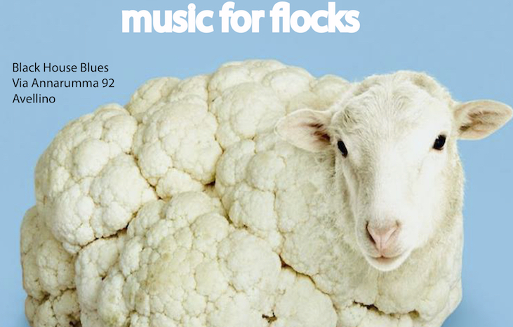 Sheep, Music for flocks: ad Avellino due locali insieme