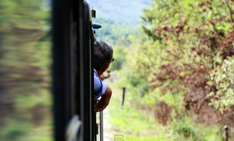 Torna l'Irpinia Express tra i vigneti di Fiano, Greco e Taurasi