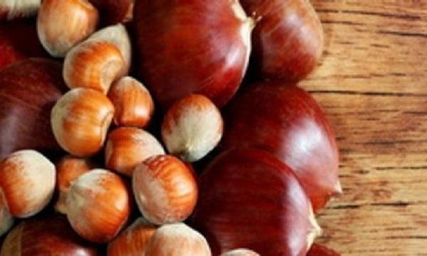 Castagne e nocciole in Irpinia, gli agronomi: 'Buona raccolta, ma prezzi ancora bassi'