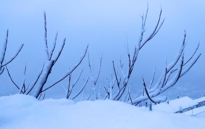Nevicata in arrivo, prime scuole chiuse in Alta Irpinia